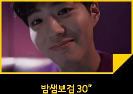 밤샌보검 30